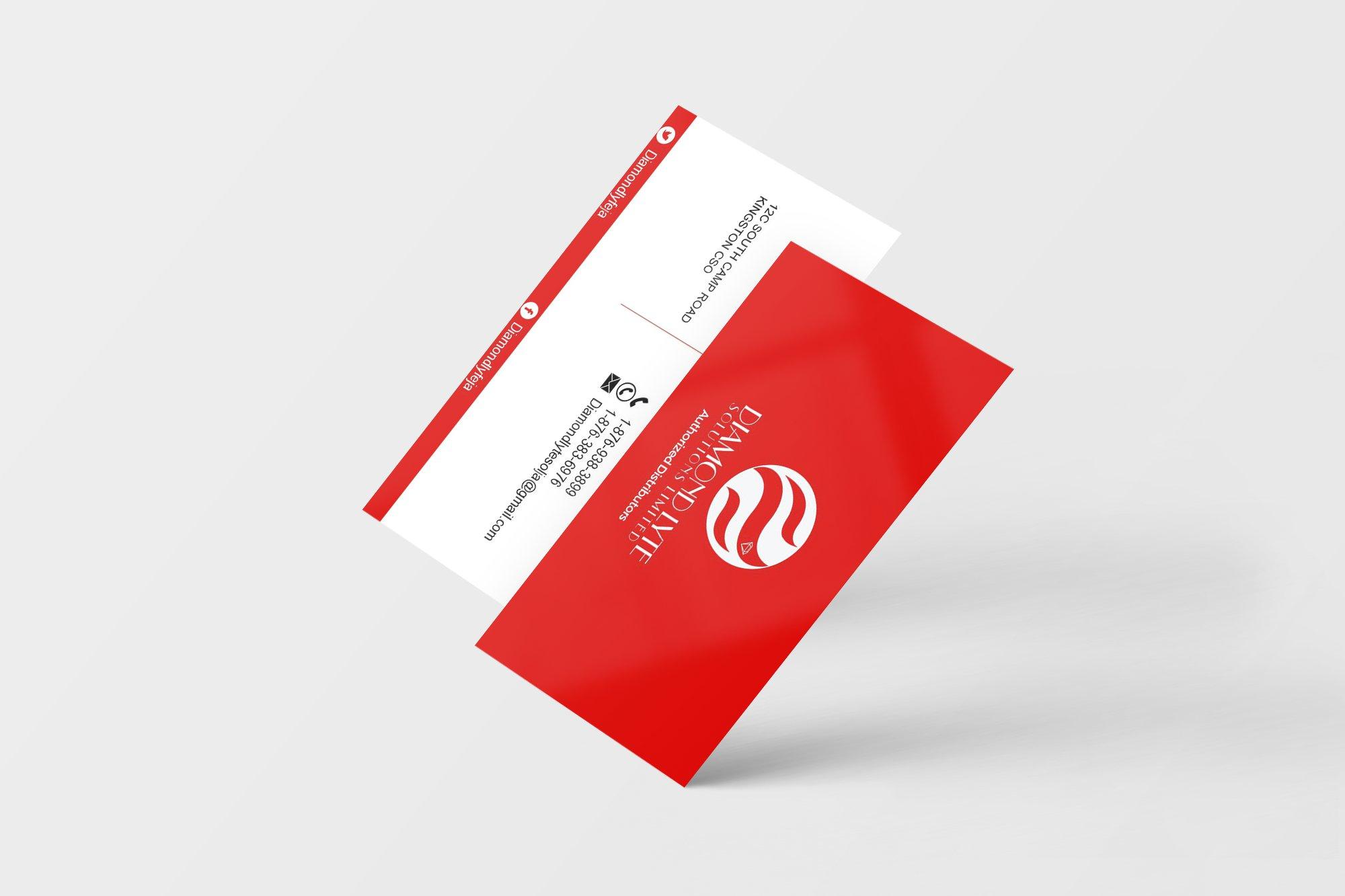dls business card_v1